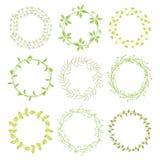 Corone floreali verdi disegnate a mano Fotografia Stock Libera da Diritti