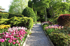 Cororful spring garden. Stone path in colorful spring garden Royalty Free Stock Images