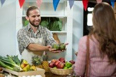 Corossols de offre de sourire de vendeur à la femme au compteur Image stock