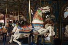 Corousel Pferde Lizenzfreie Stockfotos
