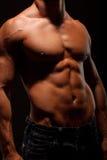 Corpo bonito Fotografia de Stock