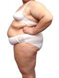 Corpo da mulher do excesso de peso no roupa interior Foto de Stock Royalty Free