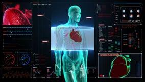 Corpo de giro zumbindo e coração de varredura Sistema cardiovascular humano, luz azul do raio X no painel da interface de utiliza