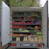 Corpo del camion con i mazzi di fiori Fotografie Stock Libere da Diritti
