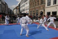 Corpo di pace del taekwondo fotografia stock libera da diritti