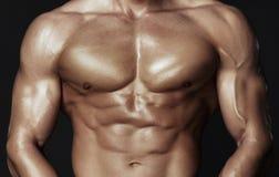 Corpo do homem muscular Imagens de Stock