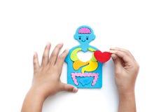 Corpo e cuore Fotografia Stock Libera da Diritti