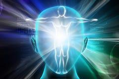 Corpo humano fotografia de stock royalty free