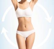 Corpo magro das mulheres no roupa de banho com setas Foto de Stock