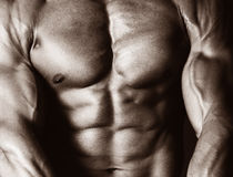 Corpo maschio Fotografie Stock Libere da Diritti