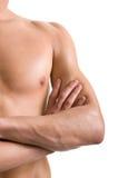 Corpo masculino despido do ombro e do braço imagem de stock