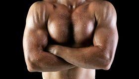 Corpo molhado do homem Fotos de Stock Royalty Free