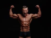 Corpo muscular Foto de Stock