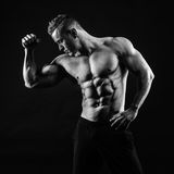 Corpo muscular Fotos de Stock Royalty Free