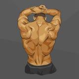 Corpo muscular do homem Fotos de Stock Royalty Free