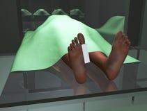 Corpo na morgue Fotografia de Stock Royalty Free
