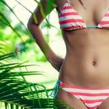 corpo nos tropics Fotos de Stock