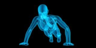Corpo translúcido muito detalhado de um homem que faz impulso-UPS fotografia de stock