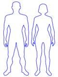 Corpo umano Fotografie Stock Libere da Diritti