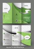 Corporate Business Store Tri-Fold Brochure Stock Images