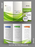 Corporate Business Tri-Fold Brochure Stock Photos