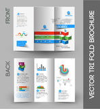 Corporate Business Tri-Fold Brochure Stock Images