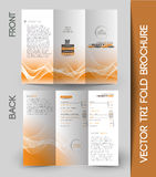 Corporate Business Tri-Fold Brochure Royalty Free Stock Photo