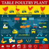 Corporate Design. poultry farm, production of chicken meat