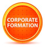 Corporate Formation Natural Orange Round Button royalty free illustration