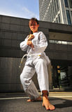 Corporate Karate 11 Stock Photos