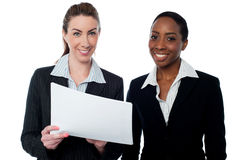 Corporate ladies reviewing reports Royalty Free Stock Photo