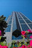 Corporate Office Tower Royalty Free Stock Photography