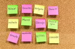 Thank you many languages. Great abstract photo shoot. Stickers are lying on the board. On each sticker is written thank you on different languages. Very helpful Royalty Free Stock Photo