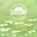 Corporate website design Stock Photo