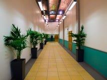 Corporate White and Yellow Hallway Stock Photo
