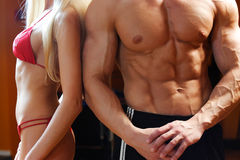 Corpos 'sexy' e grandes da forma Fotografia de Stock