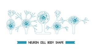 Corps cellulaire de neurone Image stock
