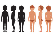 Corps d'enfant, anatomie humaine, illustration stock