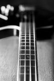 Corps d'une guitare basse classique illustration de vecteur