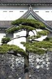 Corps de garde de fossé, palais impérial, Tokyo, Japon. Image libre de droits