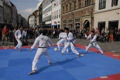 Corps de paix du Taekwondo images libres de droits