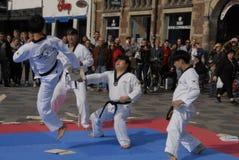 Corps de paix du Taekwondo image libre de droits