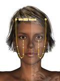 Corps féminin avec le squelette, point ST8 Touwei, 3D Illu d'acuponcture Photo libre de droits