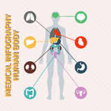 Corps humain infographic médical Image libre de droits