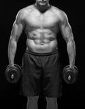 Corps sans chemise musculaire de sportif se tenant avec des haltères Rebecca 36 Images stock