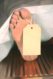 Corpse. A caucasian foot with a toe tag in a morgue stock photos