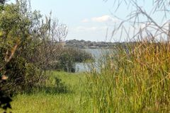 Corpus Christi State Park do lago, Texas fotos de stock royalty free