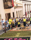 Corpus Cristi in La Orotava. People working in the streets of the Orotava on the day of the carpets of flowers in the Corpus Cristi. It is an editorial image stock photography