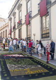 Corpus Cristi in La Orotava. People working in the streets of the Orotava on the day of the carpets of flowers in the Corpus Cristi. It is an editorial image royalty free stock photography