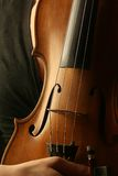 Corpus of violin instrument Royalty Free Stock Photography